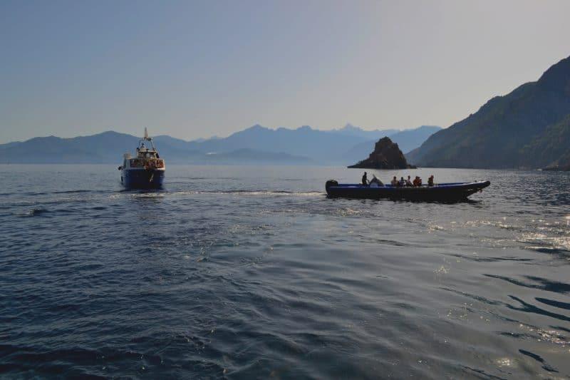 bateaux calanche piana